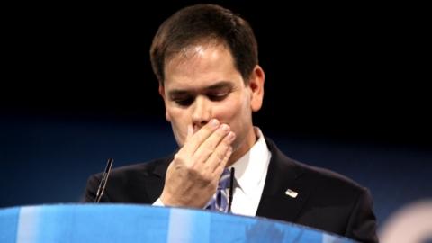 Marco Rubio, wikileaks,